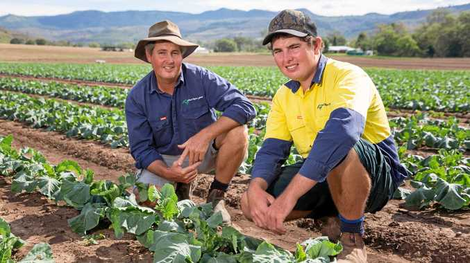 Supermarket giant helps farmers drought-proof operations