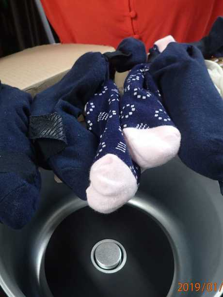 The animals were stuffed inside socks, which were placed into the bottom of cooking appliances.