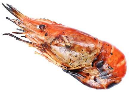 It's a prawn, OK?