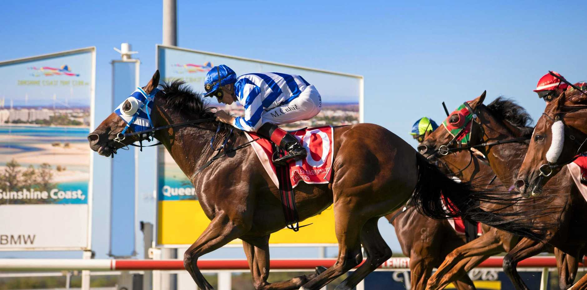 NEW PACKAGES: Noosa Destination Management Company has partnered with the Sunshine Coast Turf Club to create race day packages for Noosa residents.