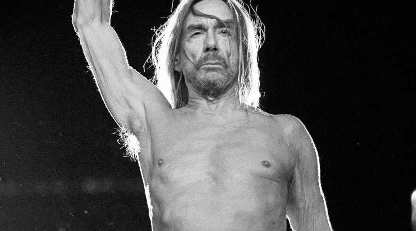 IDOL: Legendary rocker Iggy Pop is one of the international drawcards at this year's Bluesfest. The festival, which celebrates its 30th anniversary in 2019, kicks off today.