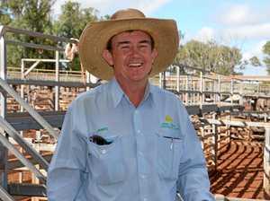 Angus heifers clear winners at Coolabunia weaner sale