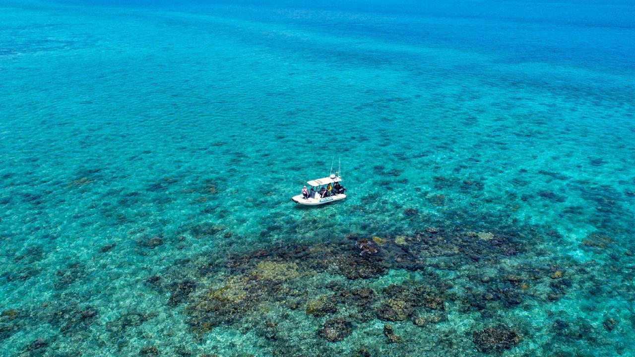 Martha Ridgway shipwreck site near Raine Island. © Commonwealth of Australia (Great Barrier Reef Marine Park Authority), by Andrew Denzin.