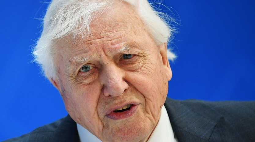Broadcaster and naturalist David Attenborough has been attacked on air. Picture: Mandel Ngan/AFP