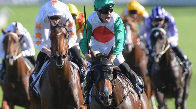 He's legit: Litt's flying colt sets record straight