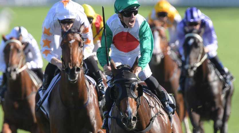 Jockey Joshua Parr shows his delight after Castelvecchio's dazzling finishing burst. Picture: AAP