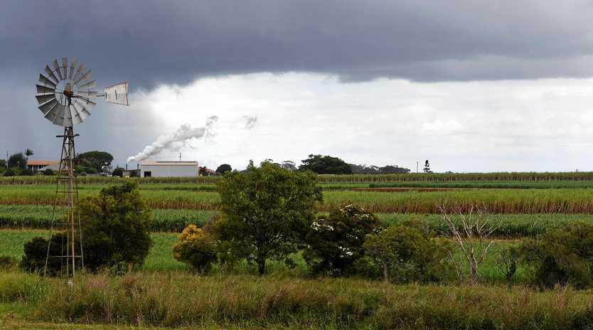 Rain predicted for Bundaberg.