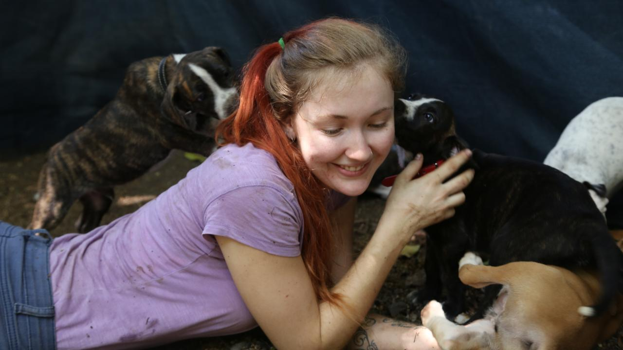Toyah Cordingley soaks up some puppy love at Paws and Claws