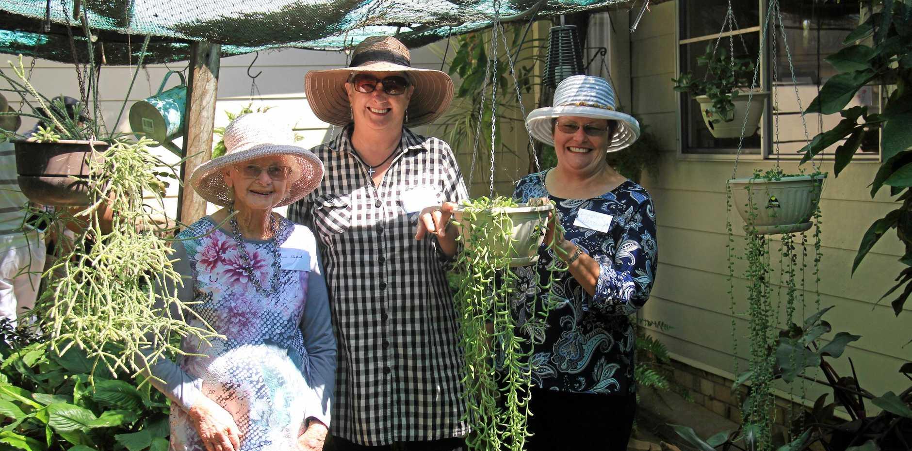GREEN THUMBS: Mavis Clarris, Kitty Tweed & Bronwyn Hartwig in the bush house.