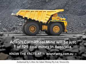 Adani campaign to address 'lies insults and hysteria'