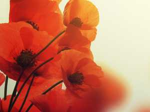 ANZAC DAY: Isaac, Mackay and Whitsunday service times