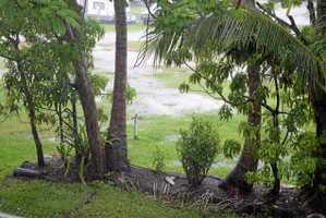 How much rain has fallen around Whitsundays