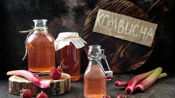 Kombucha is now on tap in the Tweed
