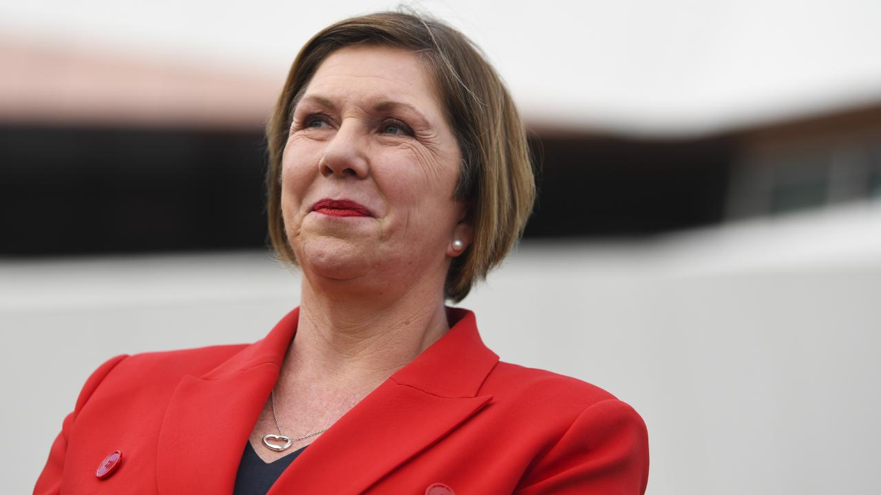 Shadow health spokeswoman Catherine King has stepped forward thanks to her work on Labor's health policy, especially the cancer care package.