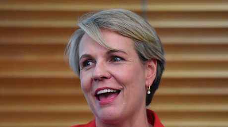Tanya Plibersek is extremely popular with the public. She is seen as a moderating force to Bill Shorten's more hard-edge persona.