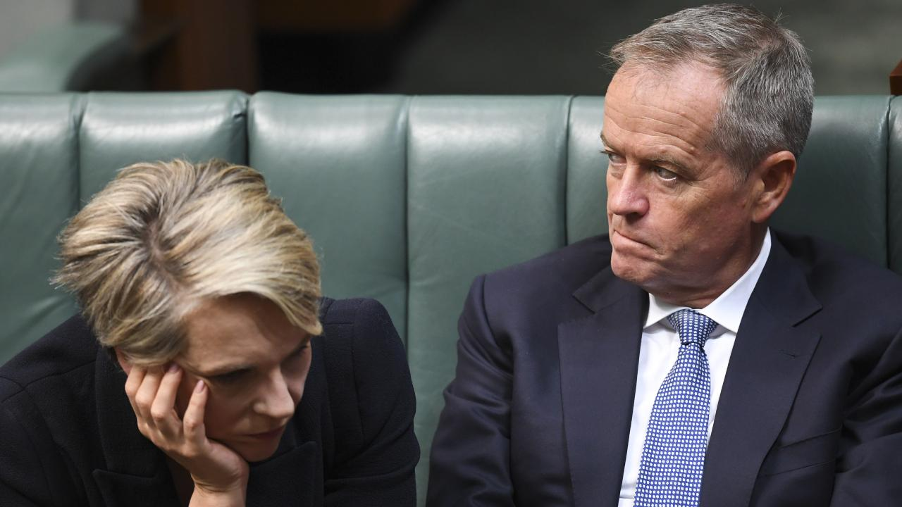 Bill Shorten's closest ally and confidant is Tanya Plibersek, with whom he runs a true leadership partnership.