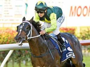 Nozi set for Dalby race return