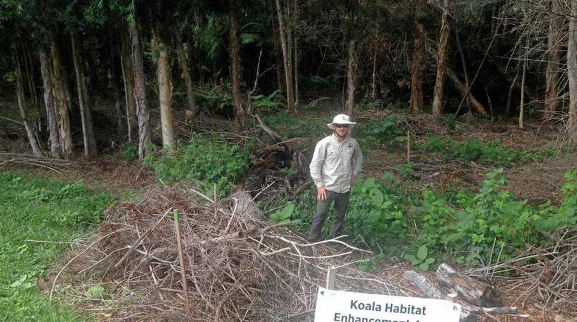 Envite Supervisor Jason Page at Dunlop Dr Reserve where bush regeneration works has been undertaken.