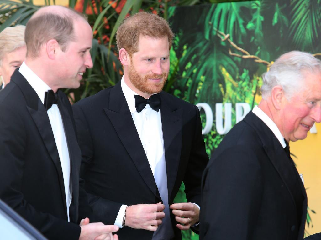 "A royal biographer believes the brothers' relationship will go from ""strength to strength"" from now on. Picture: matrixpictures.co.uk"