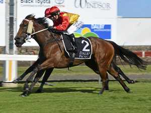 Well Sighted delivers Nozi welcome-back win