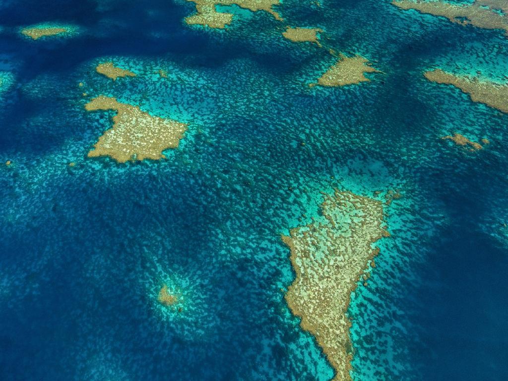 The Great Barrier Reef. Picture: Josh Smith/Canon Australia