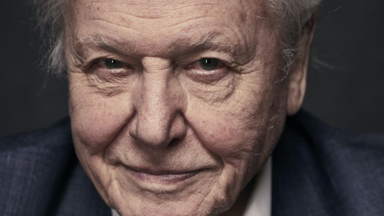"Sir David Attenborough admits that he doesn't have long to live and ""can't bear"" to think about Earth's future. Picture: Supplied"
