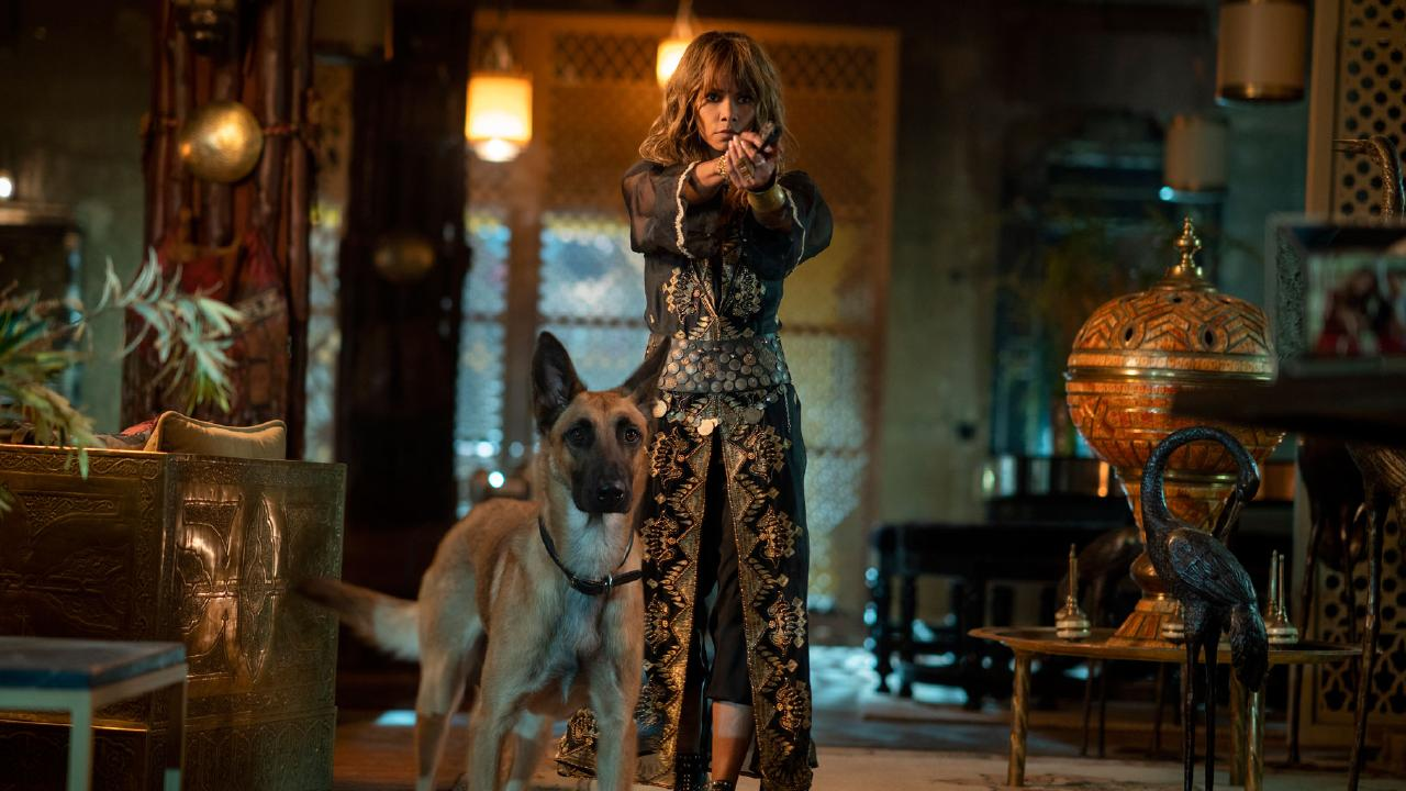 Halle Berry in John Wick 3.