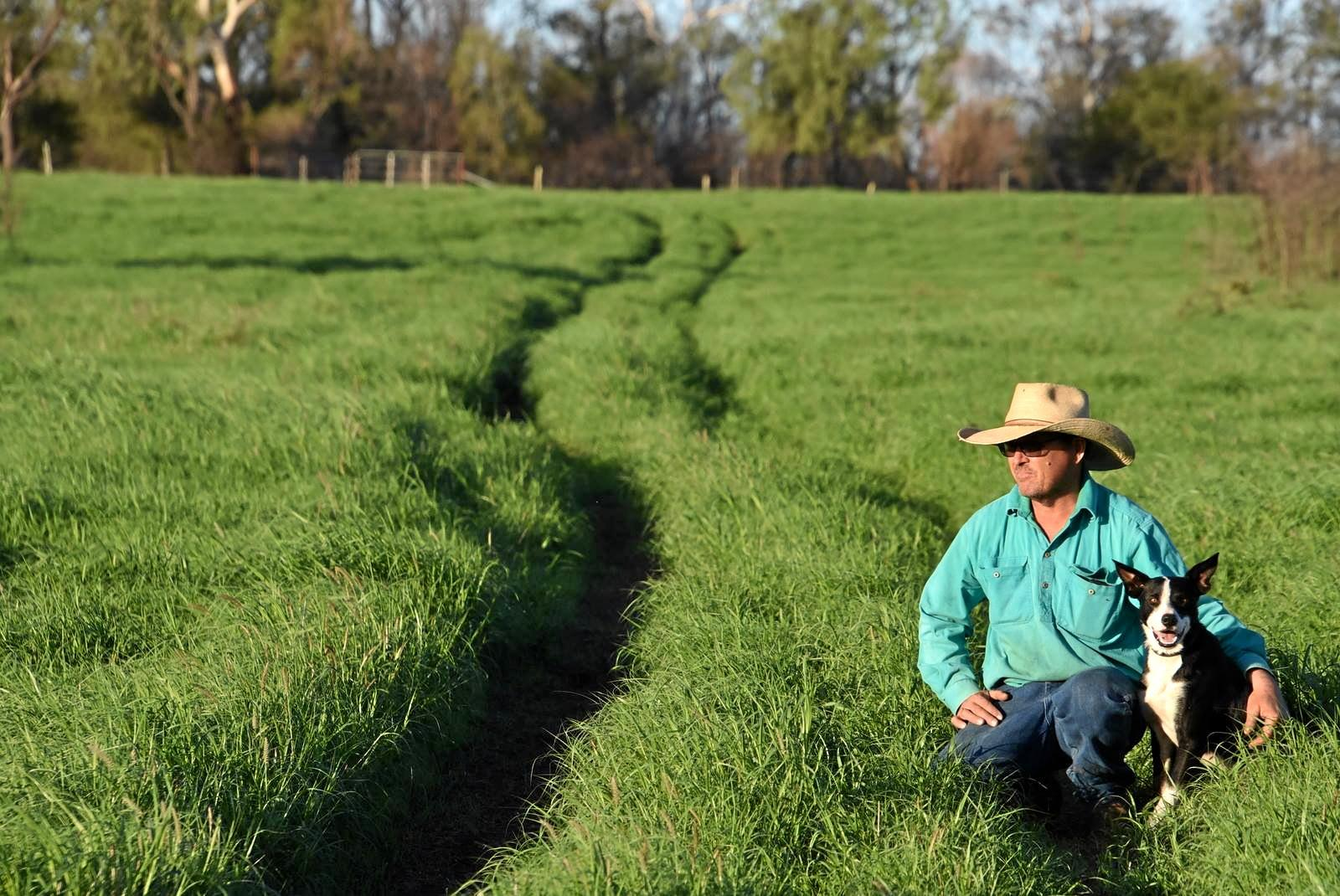 PURE DELIGHT: Rain has produced green gold for Tim Patterson at the top of no.3 paddock at Bottle Tree Downs, Rolleston.