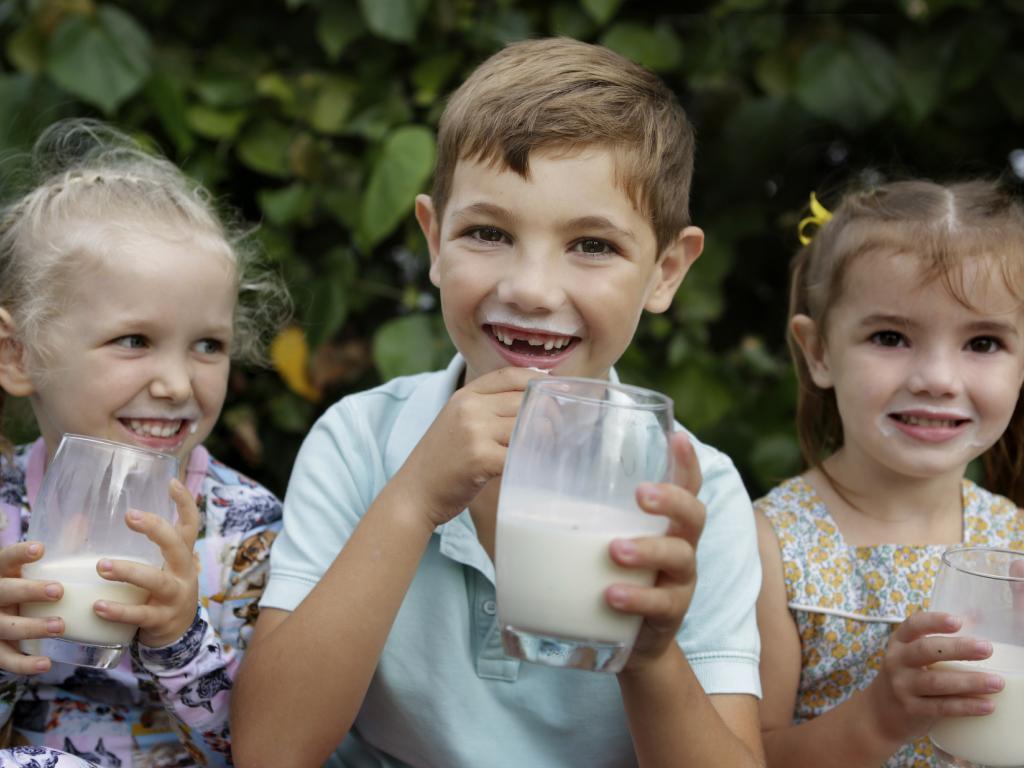Lydia Oliver, 4, Charlie Kidman, 7, and Elizabeth Kidman, 4, sample the Naturo milk. Picture: Megan Slade/AAP