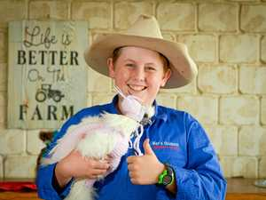 Is this Australia's most talented Chicken farmer?
