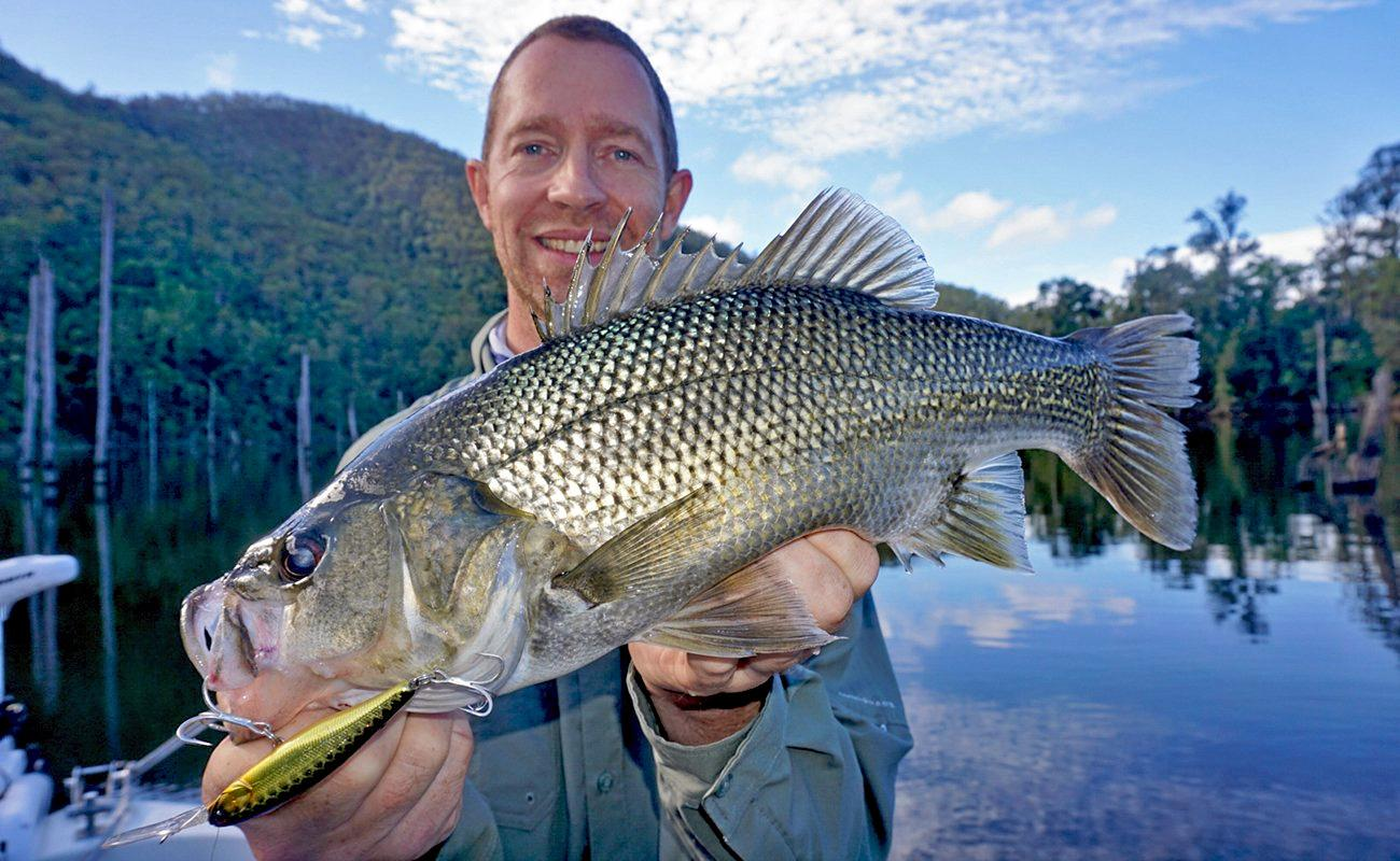GOOD HAUL: Grant Budd from Davo's Northshore Bait and Tackle, Marcoola, caught and released this 40cm+ bass at Borumba Dam. It went for a Jackall Squirrel (Black Gold Spark) hard body lure.