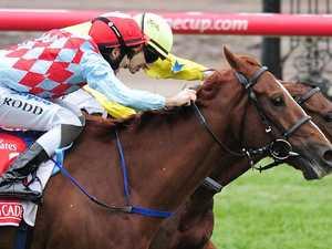 Melbourne Cup winner Dunaden dies