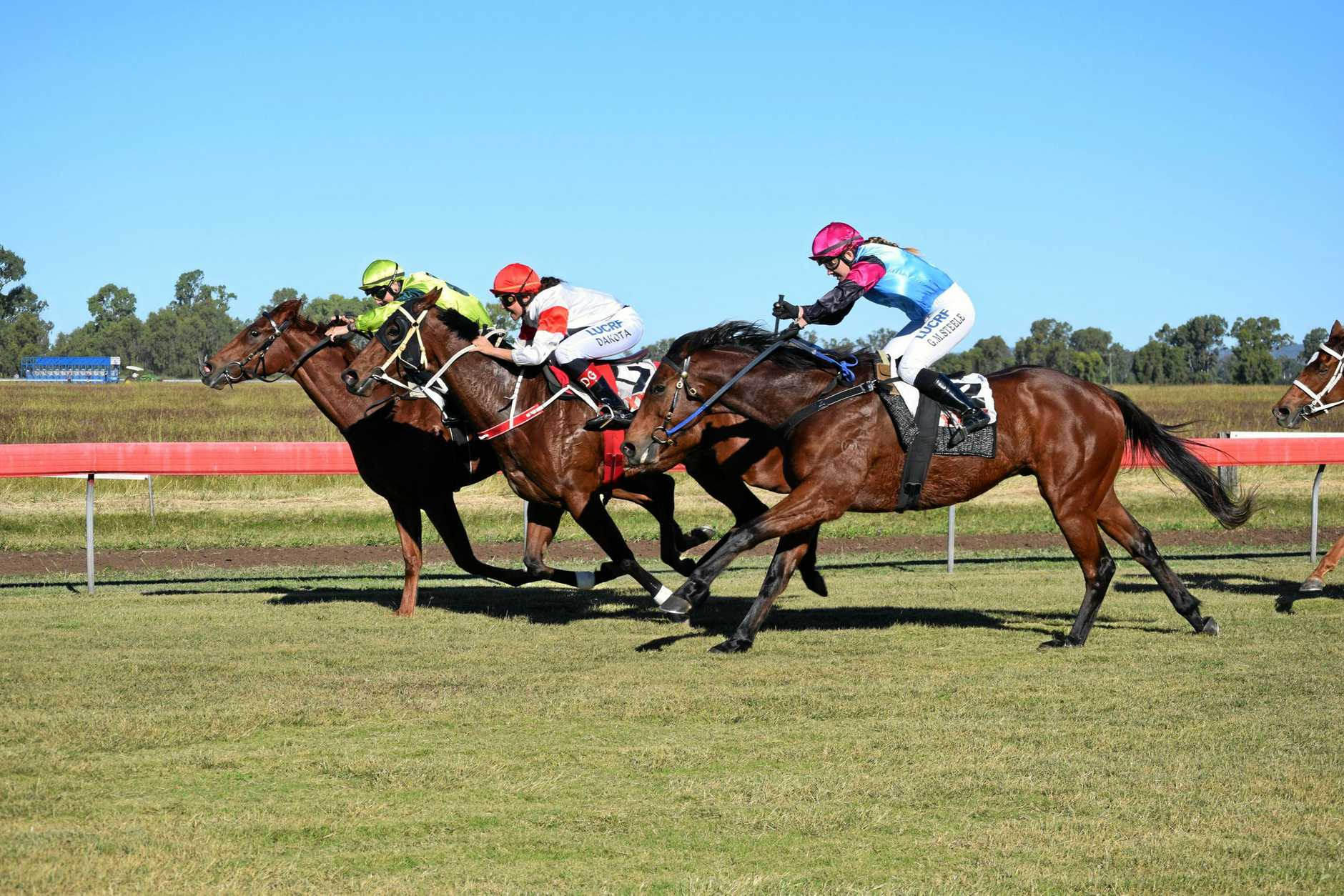 RACING BEST: Thangool Race Club will have a Battle of the Bush race qualifier included in its five-race program on May 25.