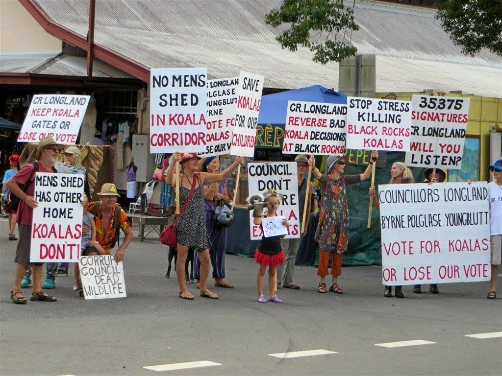 Koala activists protesting against development at Black Rocks Sports Field in the previous council term.