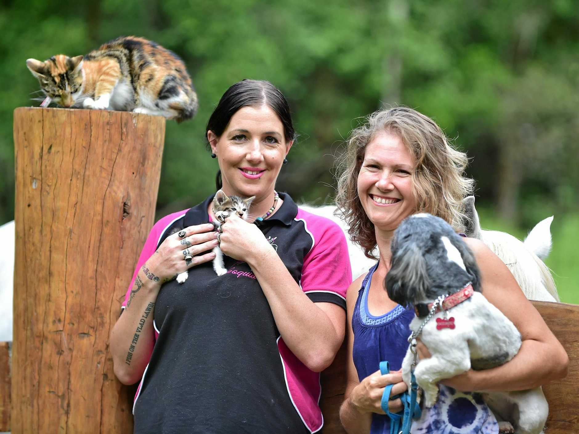 FILE PHOTO: Soquilchi Rescue Ranch has vowed to close after it was served with an RSPCA summons. President Miranda Wells and vice president Helen Knight.