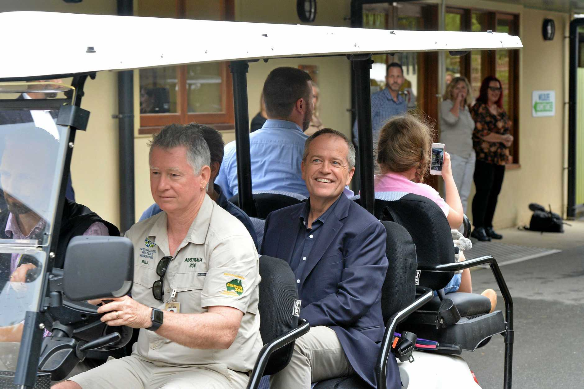 Bill Shorten swapped the Bill Bus for an Australia Zoo buggy to inspect the wildlife.