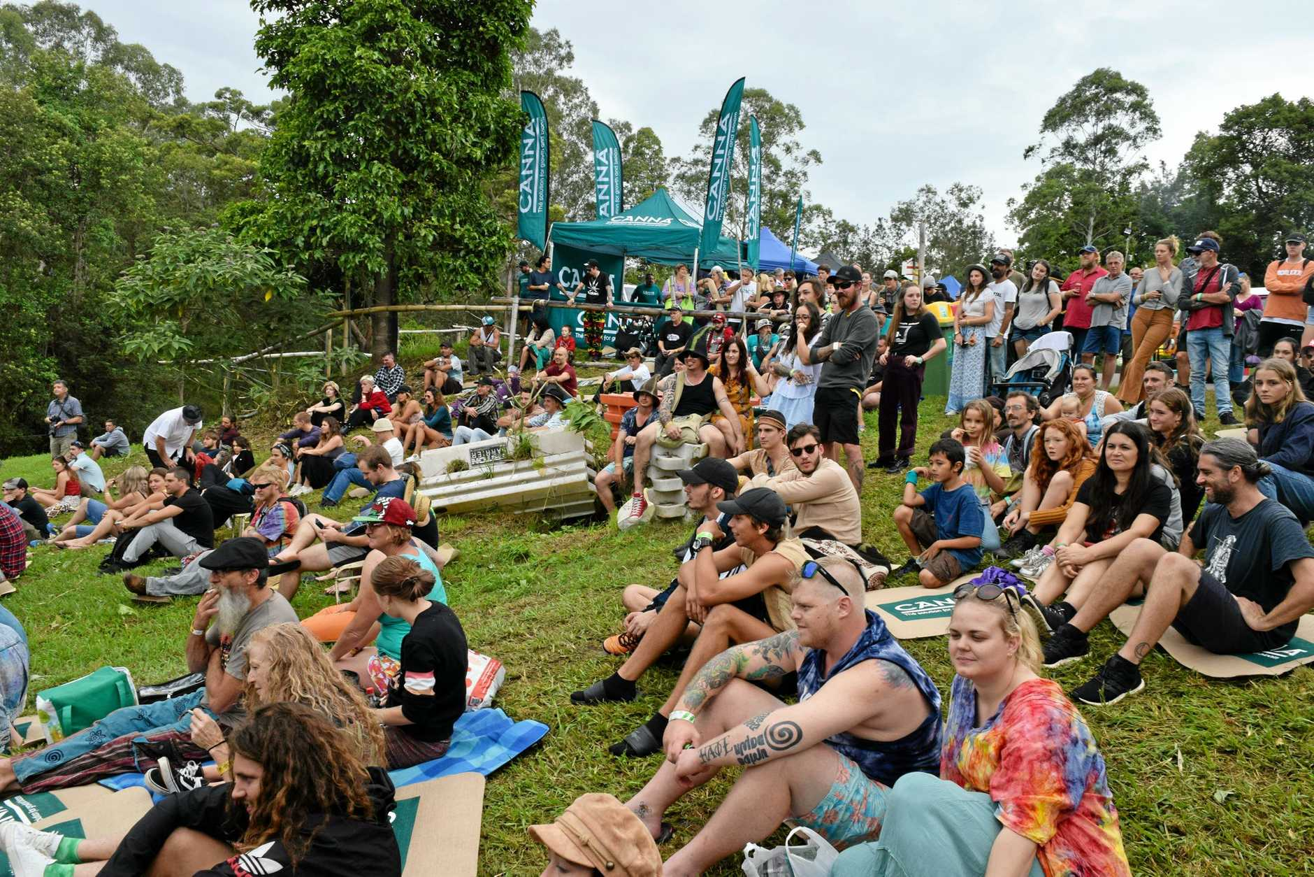 MardiGrass 2019 Cannabis Law Reform Rally & Gathering.