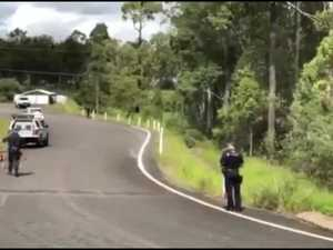Police dog squad search Tinana bushland1