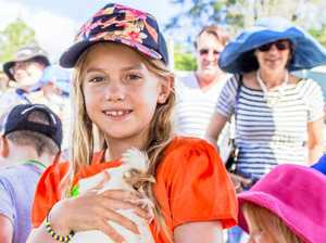 Cuddle time at Cooroy Fusion Festival