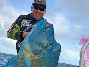 BEHEMOTH: Angler reels in 50kg 'fish of a lifetime'