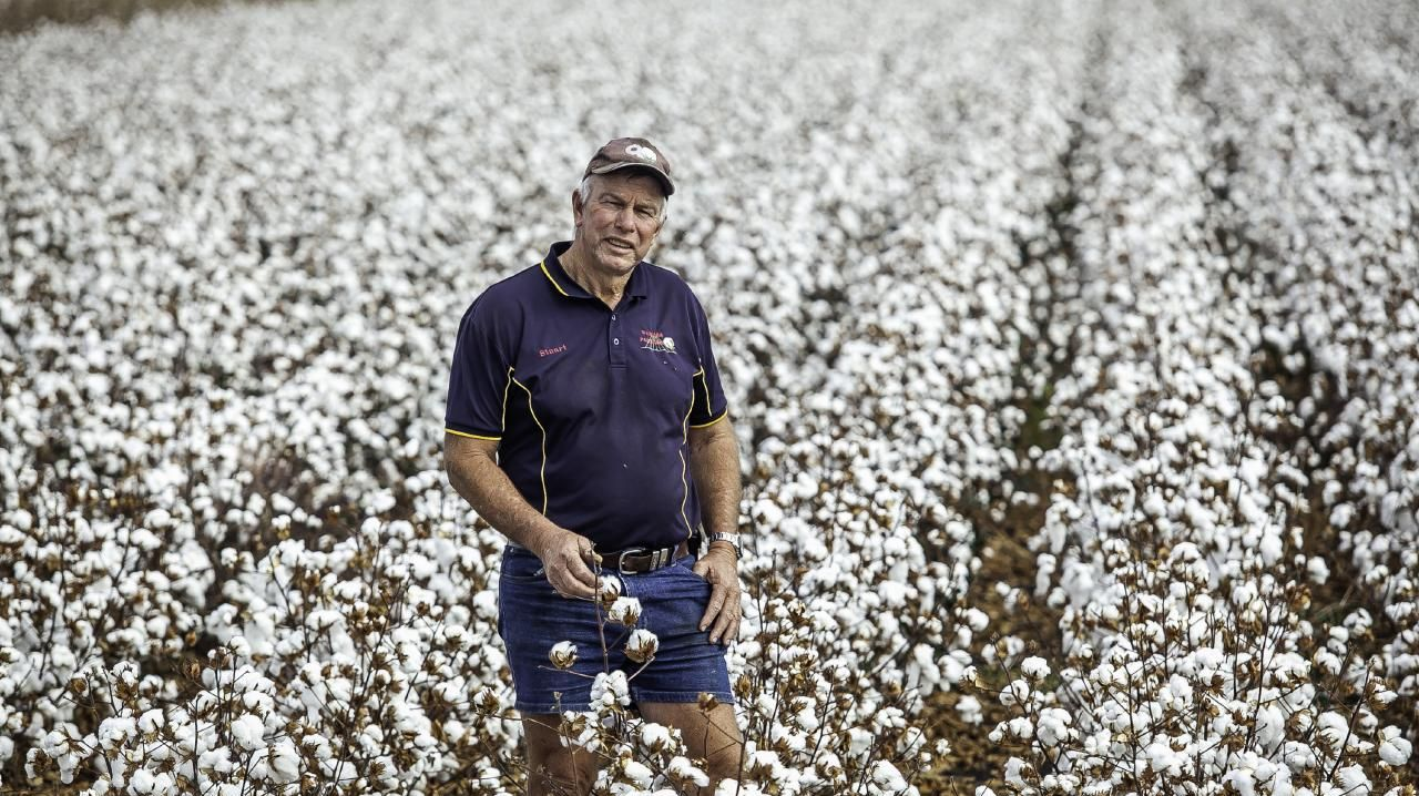 Cottongrower Stuart Armitage on his 1700acre property at Cecil Plains, 210km west of Brisbane. 3rd May 2019, Picture: David Martinelli