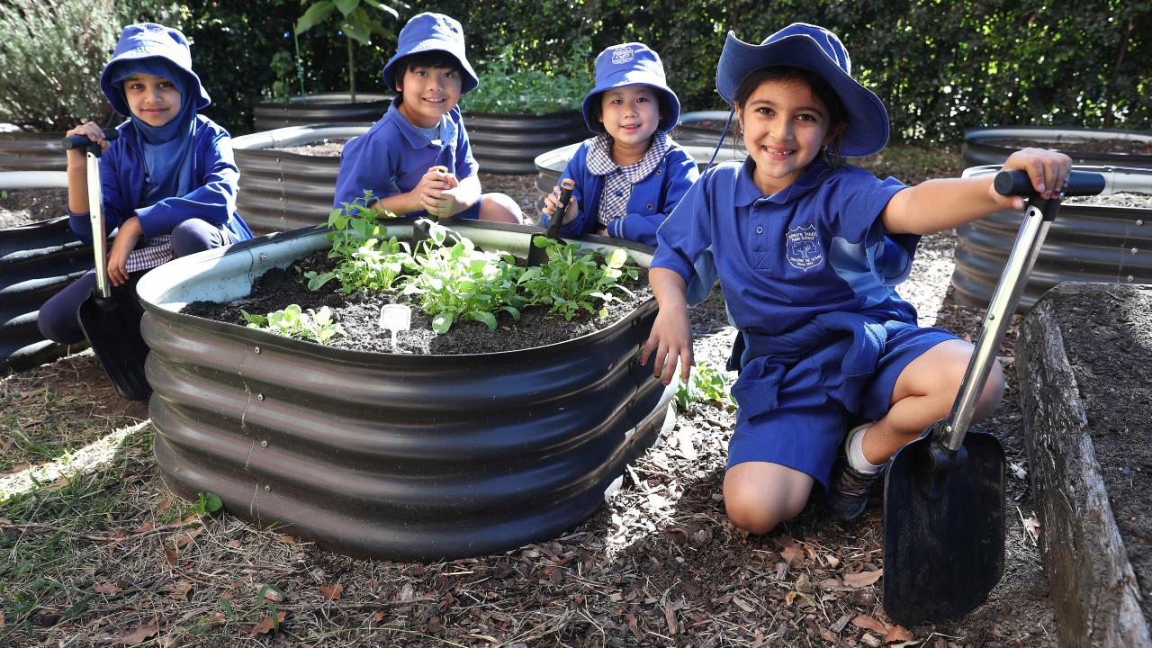 Students Hajera, Marc, Caitlyn and Yara is excited to dress in mufti to help farmers and learn more about farming with her school's garden. Picture: Brett Costello