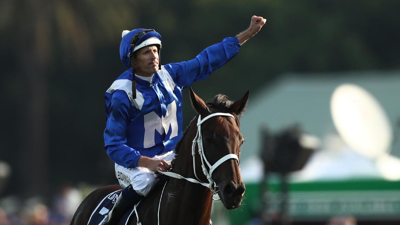 Winx has plenty of suitors. Picture: Getty