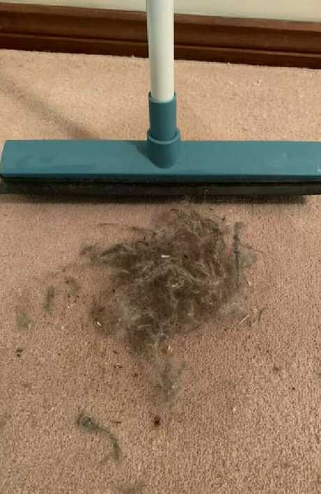 Shirley's photo of the dirt on her floor after a go over with a Kmart broom went viral.