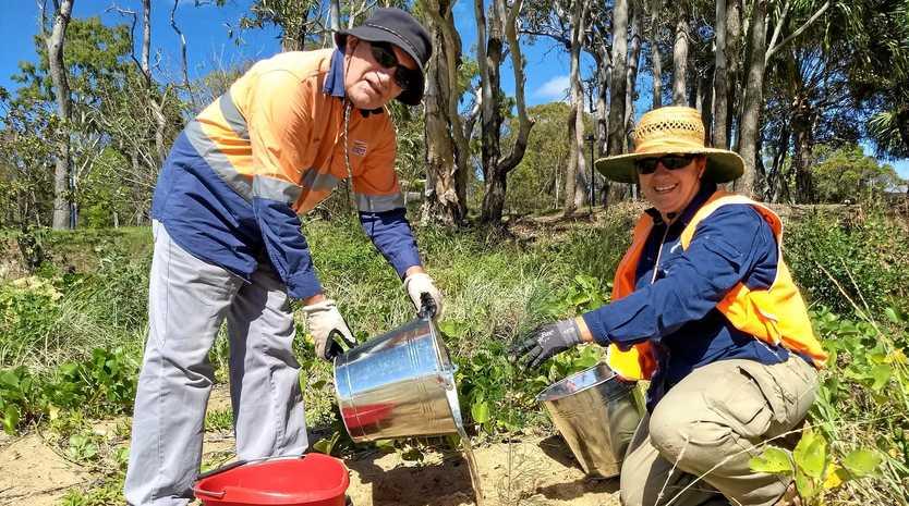 REVEGETATION: Conservation Volunteers Australia team leader Iris Cosgrove with Gordon Duncan plant trees at Wyndham Park last month.