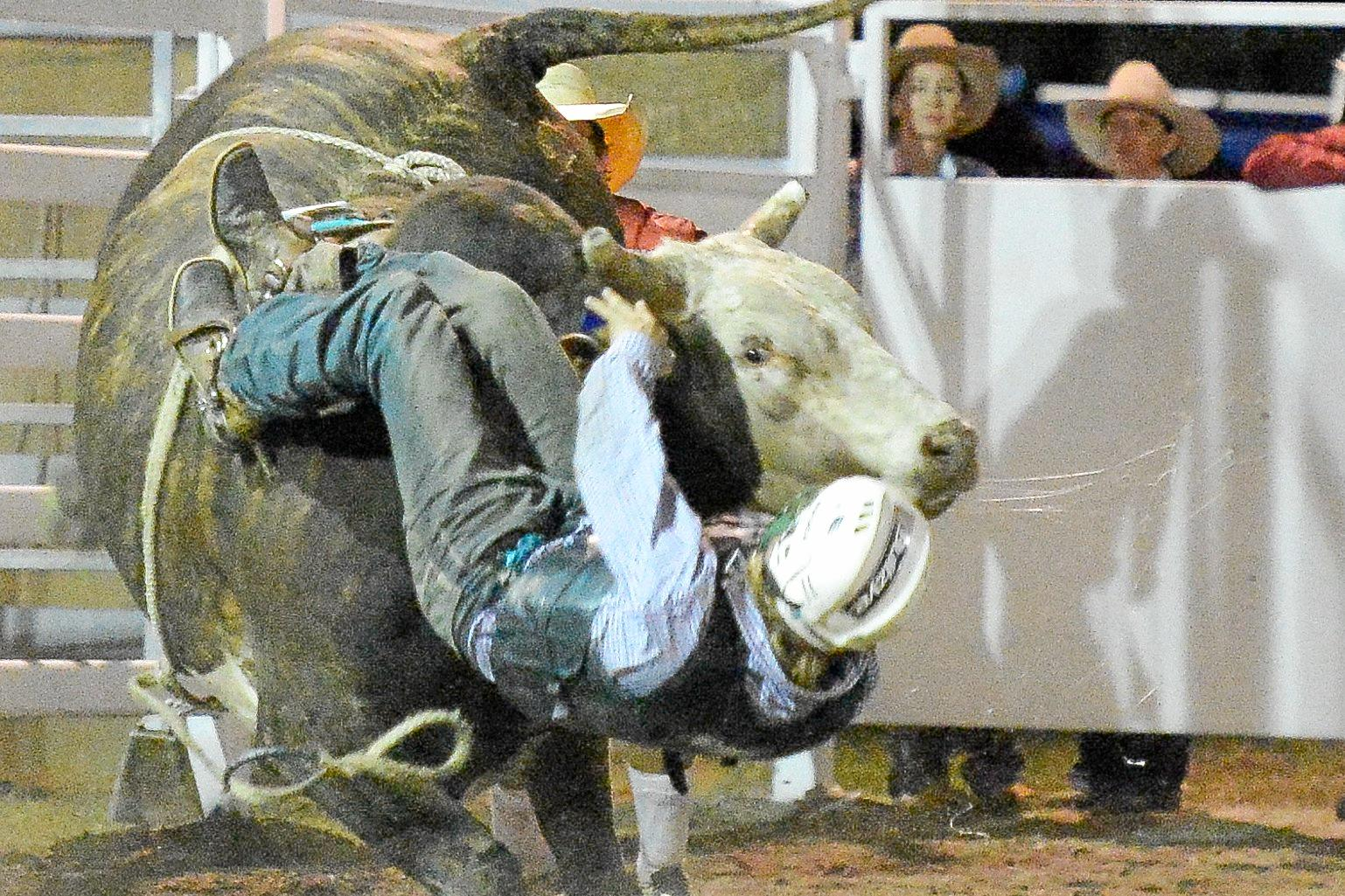 BUCKED: Action from last year's Miriam Vale Rodeo.