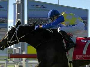 Gympie horse 'Ciggy' smokes the competition at Caloundra