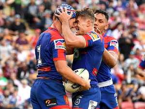 Ponga ices win as Knights slay Dogs