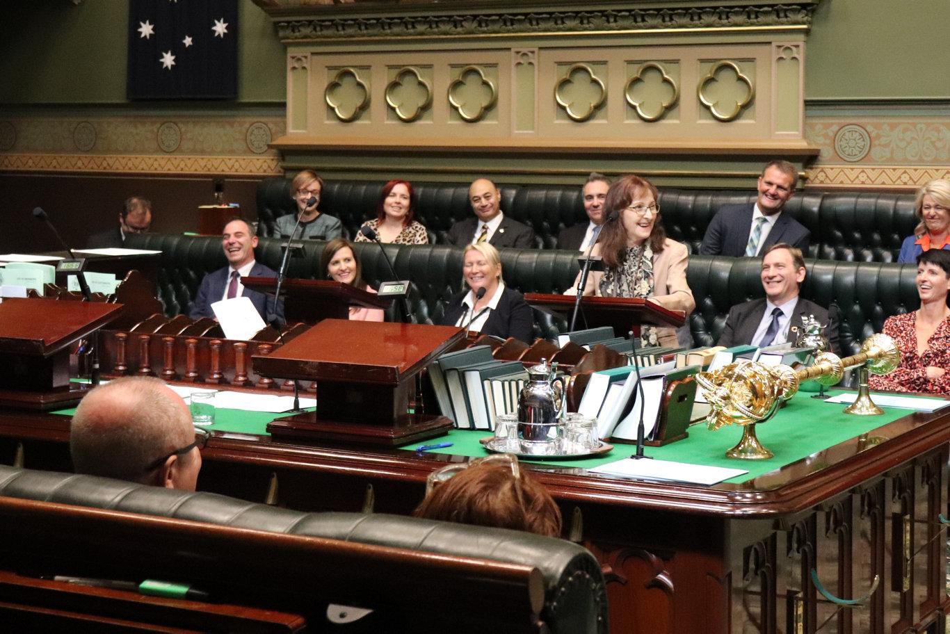 Lismore MP Janelle Saffin delivering her maiden speech at NSW Parliament.