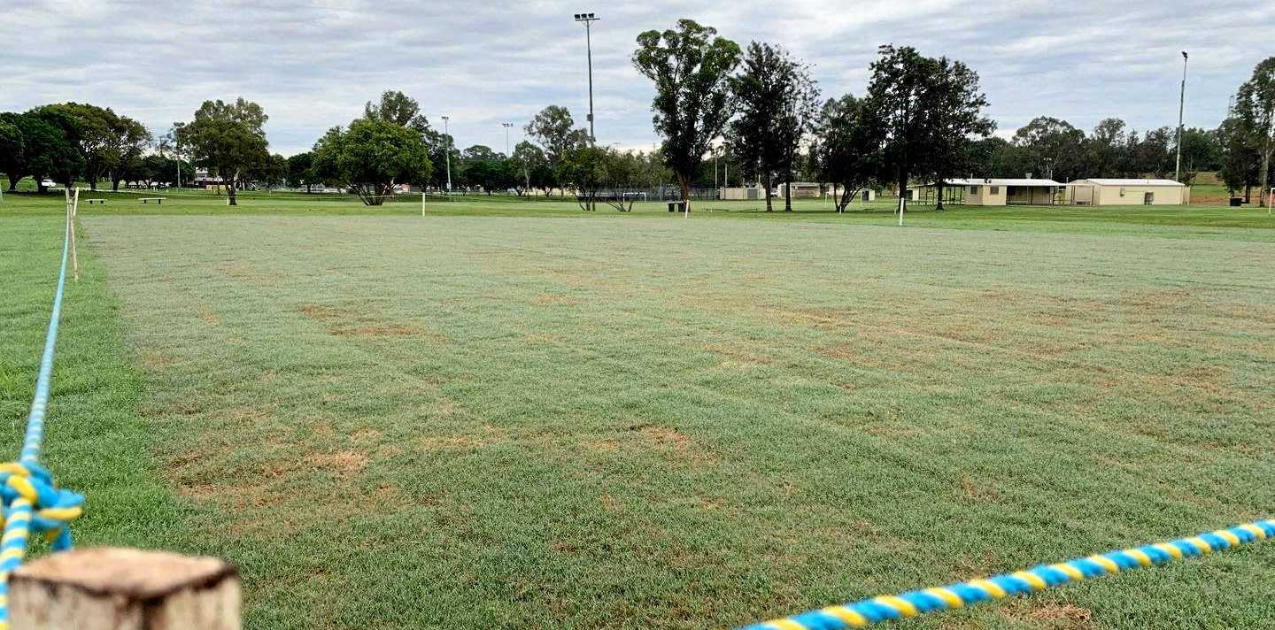 Gympie Regional Council reveal the beginnings of a unique new cricket wicket at One Mile.